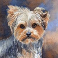 Marmont Hill - 'Sadie Belle Yorkshire Terrier' Painting Print on Wrapped Canvas - Multi-color