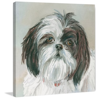 Marmont Hill - 'Payton Shih Tzu' Painting Print on Wrapped Canvas