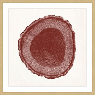 Marmont Hill - 'Tree Ring I' Framed Painting Print