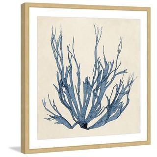 Marmont Hill - 'Coastal Seaweed I' Framed Painting Print