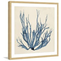 Marmont Hill - 'Coastal Seaweed I' Framed Painting Print - Multi