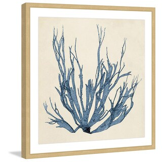 Marmont Hill - 'Coastal Seaweed I' Framed Painting Print - Multi