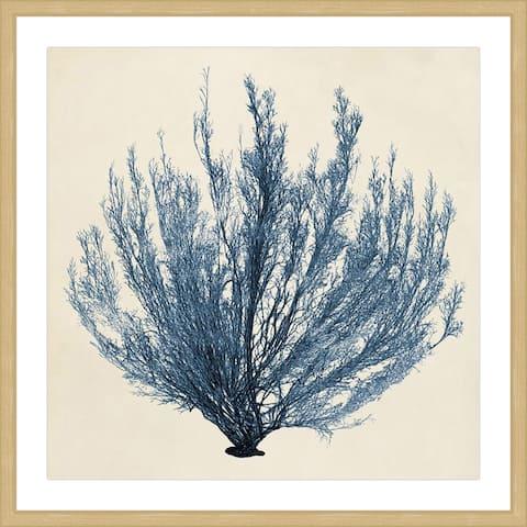 Marmont Hill - Handmade Coastal Seaweed III Framed Print
