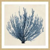 Marmont Hill - 'Coastal Seaweed III' Framed Painting Print - Multi