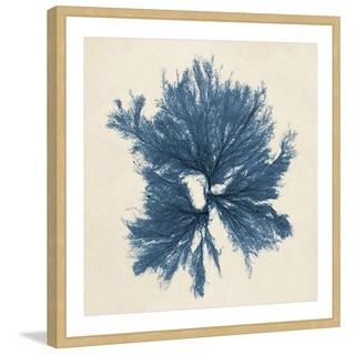 Marmont Hill - 'Coastal Seaweed V' Framed Painting Print - Multi