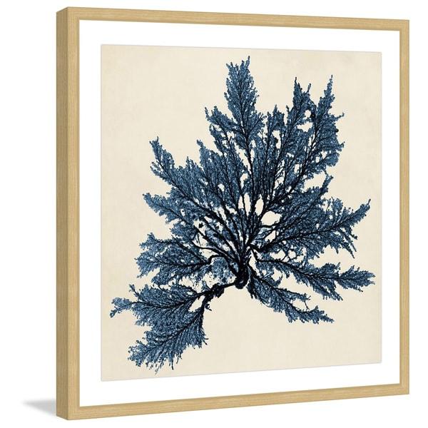 Shop Marmont Hill Handmade Coastal Seaweed Iii Framed