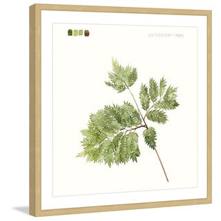 Marmont Hill - 'Leaf Study II' Framed Painting Print