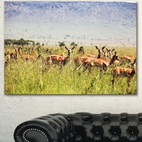 Beautiful Antelope in Grass - African Landscape Artwork Canvas - Green
