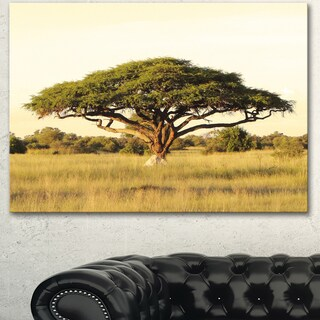 Acacia Tree on African Plain - Oversized African Landscape Canvas Art - Green