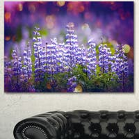 Blue Lupin Flowers on Blue Background - Large Flower Wall Artwork