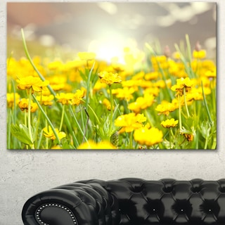 Sunny Meadow with Yellow Flowers - Floral Artwork on Canvas
