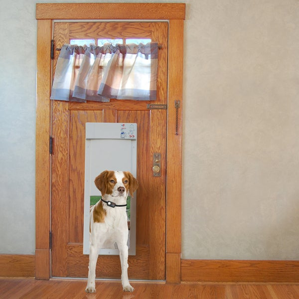 Px 1 Fully Automatic Power Pet Door For Dogs And Cats Free
