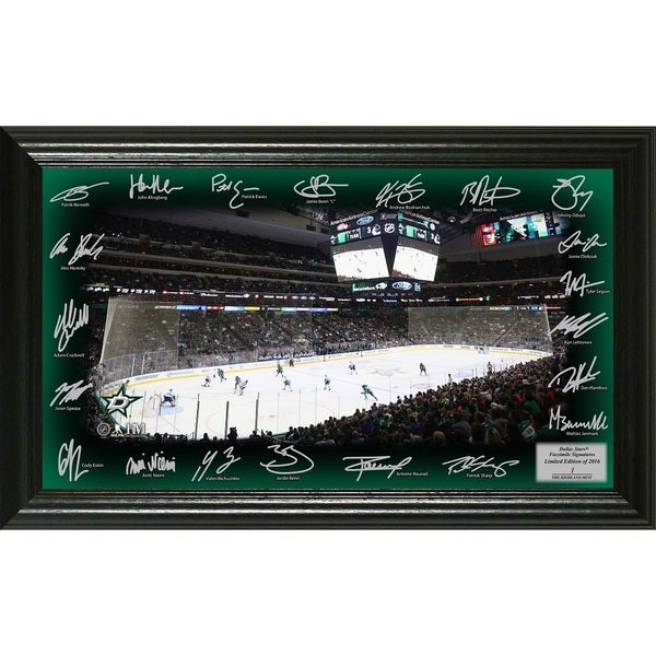 Dallas Stars Signature Rink