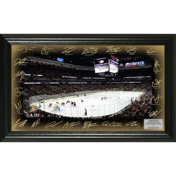 Anaheim Ducks Signature Rink