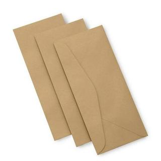 Metallic Gold-tone Paper #10 40-count Envelopes