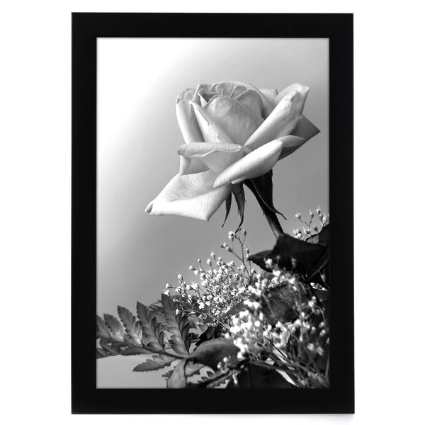 12x18 Black Picture Frame with Plexiglas Front and Mounting Hardware by Americanflat