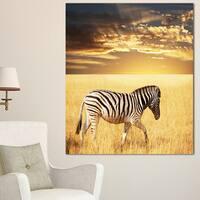 Designart 'Solitary Zebra Walking in Grassland' African Canvas Artwork