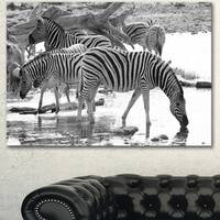 Designart 'Herd of Zebra Black and White' African Canvas Artwork