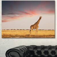 Designart 'Single Giraffe in Savannah' African Canvas Artwork