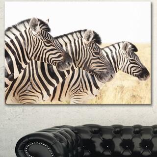 Designart 'Zebras in A Row in Grassland' African Wall Art Print