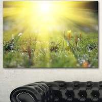 Designart 'Bright Sunset Above Spring Flowers' Oversized Landscape Canvas Art - Green