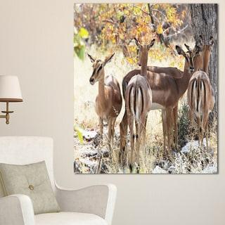 Designart 'Beautiful Herd of Antelope Gnu' Extra Large African Art Print