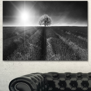 Designart 'Beautiful Black White Lavender Field' Extra Large Landscape Canvas Art