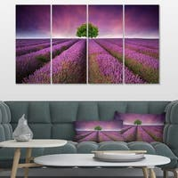 Designart 'Lavender Field Sunset with Single Tree' Large Floral Canvas Art Print - Purple