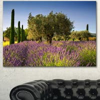 Designart 'Beautiful Lavender and Olive Trees' Large Flower Canvas Wall Art - Green