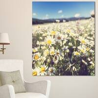 Designart 'Mountain Plain with Daisy Flowers' Large Flower Wall Artwork - White