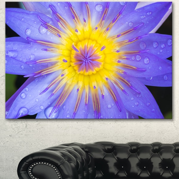 Designart 'Blooming Violet Lotus Close-up' Flowers Canvas Wall Artwork