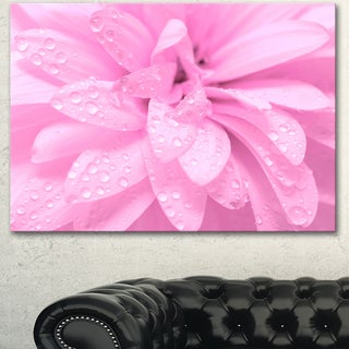 Designart 'Abstract Pink Flower with Petals' Extra Large Floral Canvas Art
