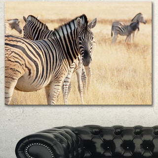 Designart 'Zebra in Etosha Wandering in Grass' African Canvas Artwork