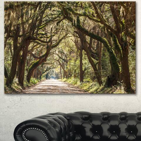 Designart 'Trees Tunnel in Botany Bay' Landscape Print Wall Art - Green