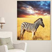 Designart 'Solitary Zebra in African Grassland' Extra Large African Art Print