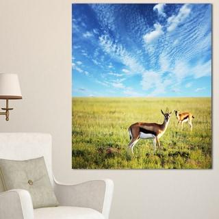 Designart 'Antelopes Wandering under Bright Sky' African Canvas Artwork