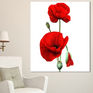Designart 'Red Poppies on White Background' Floral Canvas Artwork Print - Red