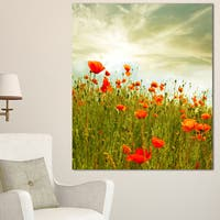 Designart 'Red Poppy Flowers in Green Field' Extra Large Floral Canvas Art - Red