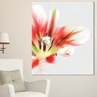 Designart 'Large Watercolor Red Tulip Flower' Large Floral Canvas Artwork