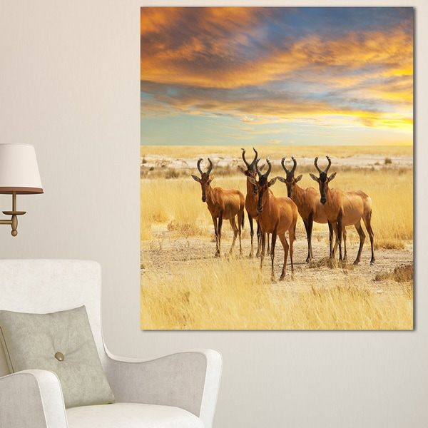 Shop Designart 'Herd Of Antelope In Grassland' Extra Large