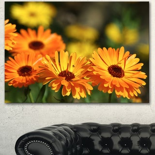 Designart 'Blooming Orange Marigold Flowers' Extra Large Floral Canvas Art