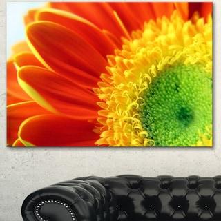 Designart 'Gerber Daisy Flower Petals' Extra Large Floral Canvas Art - Orange