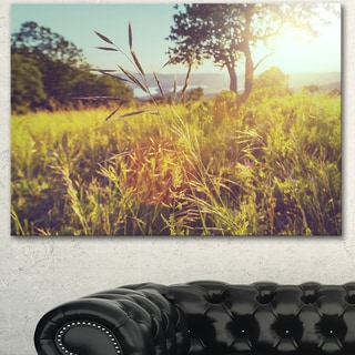 Designart 'Green Summer Meadow' Landscape Art Print Canvas