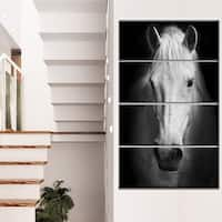 Designart 'White Horse Black and White' Extra Large Animal Artwork
