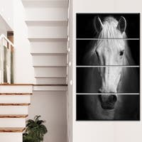 Designart 'White Horse Black and White' Extra Large Animal Artwork - White
