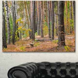 Designart 'Green Fall Forest with Thick Woods' Modern Forest Canvas Art