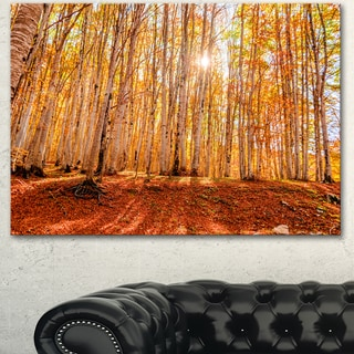 Designart 'Colorful Red Forest at Sunset' Modern Forest Canvas Art