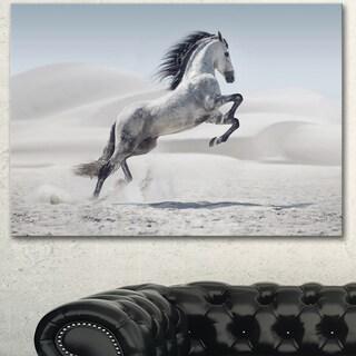 Designart 'Galloping White Horse' Large Animal Art on Canvas