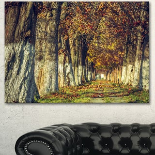 Designart 'Colorful and Serene Autumn Forest' Modern Forest Canvas Art