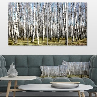 Designart 'Sunny November Day in Birch Grow' Modern Forest Canvas Art